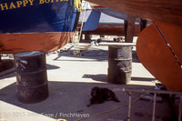 Blanchard Wood Boat Repair Seattle WA June 1977-36