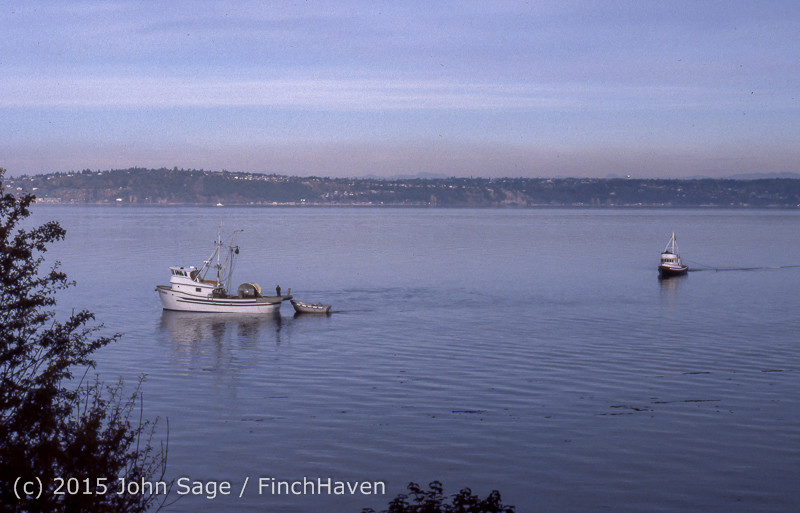Purse-seining_Salmon_Glen_Acres_Vashon_WA_1980_003