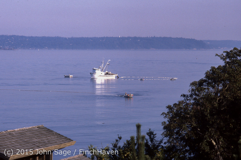 Purse-seining Salmon Glen Acres Vashon WA 1980 004