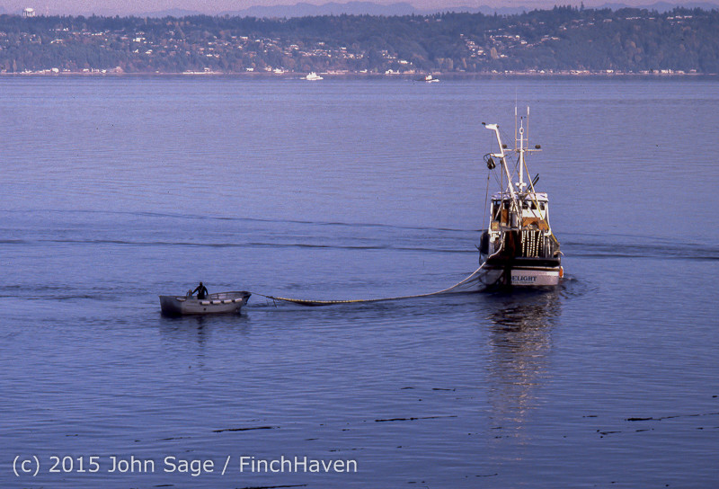 Purse-seining_Salmon_Glen_Acres_Vashon_WA_1980_005