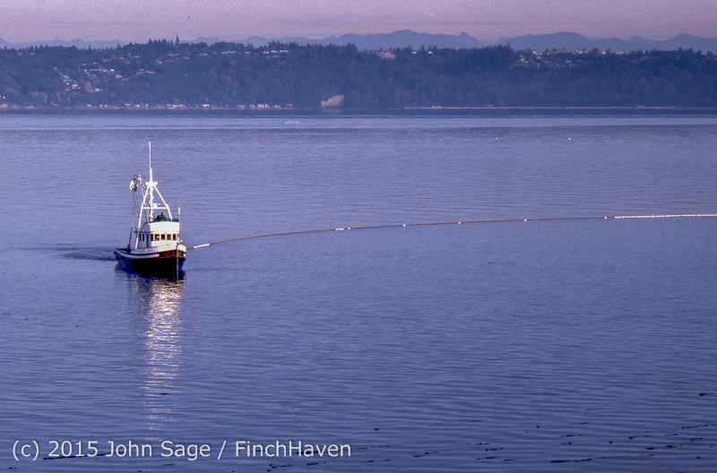 Purse-seining_Salmon_Glen_Acres_Vashon_WA_1980_007