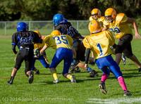3725 McMurray Football v Hawkins 100214