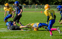 3731 McMurray Football v Hawkins 100214