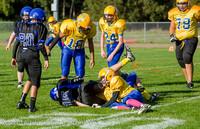 3755 McMurray Football v Hawkins 100214