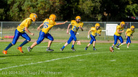 3864 McMurray Football v Hawkins 100214