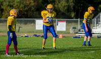 3892 McMurray Football v Hawkins 100214