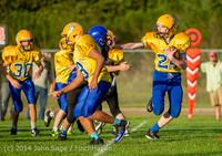 5254 McMurray Football v Hawkins 100214