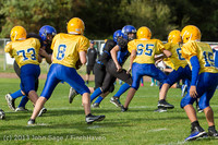 20384 McMurray Football v Hawkins 092513