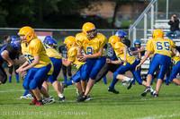 20447 McMurray Football v Hawkins 092513
