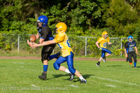 21169 McMurray Football v Hawkins 092513