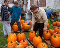 8479 VHS Football guts pumpkins 101913