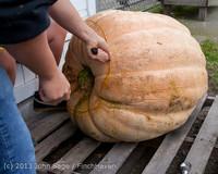 8664 VHS Football guts pumpkins 101913