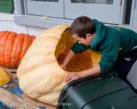 8804 VHS Football guts pumpkins 101913