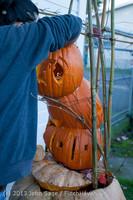 8897 Pumpkin Lighting at the Vashon Roasterie 102713