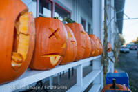 8927 Pumpkin Lighting at the Vashon Roasterie 102713