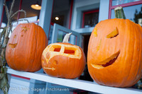8928 Pumpkin Lighting at the Vashon Roasterie 102713