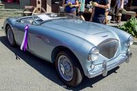 20819 Tom Stewart Car Parade and Show 2013 072113