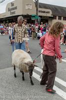 19903 Vashon Strawberry Festival Grand Parade 2014 071914