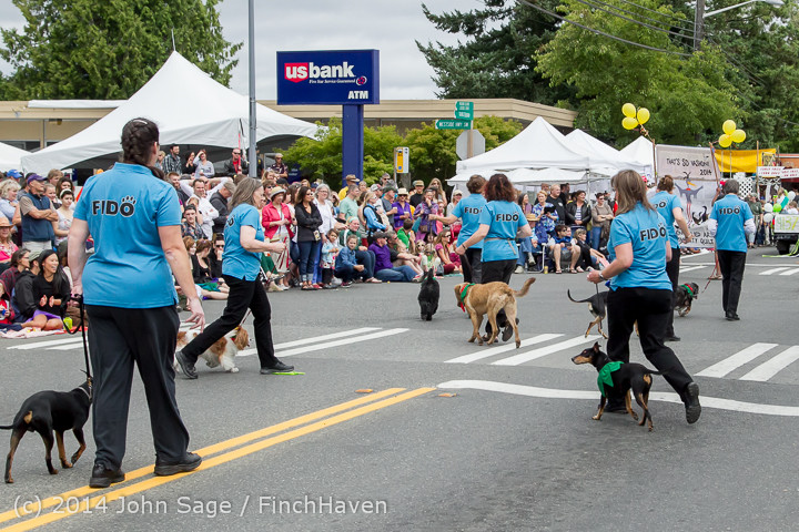 20209 Vashon Strawberry Festival Grand Parade 2014 071914