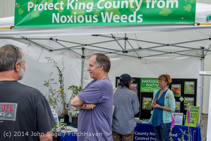 2700 Sunday Walkabout Strawberry Festival 2014 072014