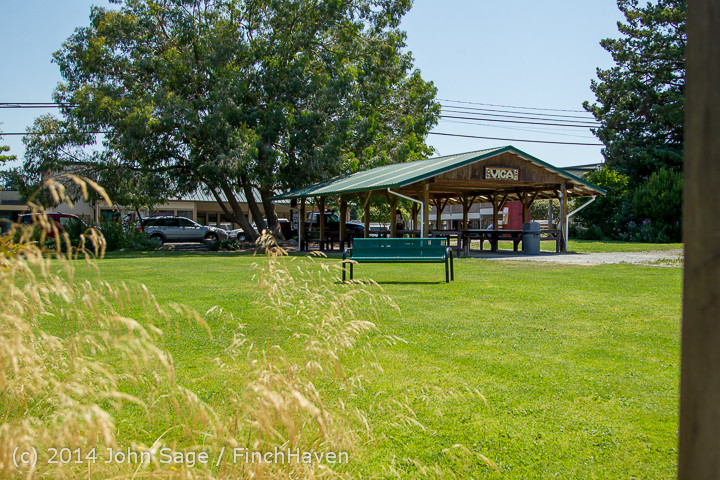 5848 Monday Walkabout Strawberry Festival 2014 071414