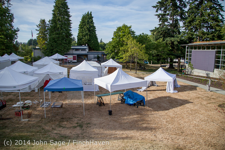 7648 Friday Walkabout Strawberry Festival 2014 071814