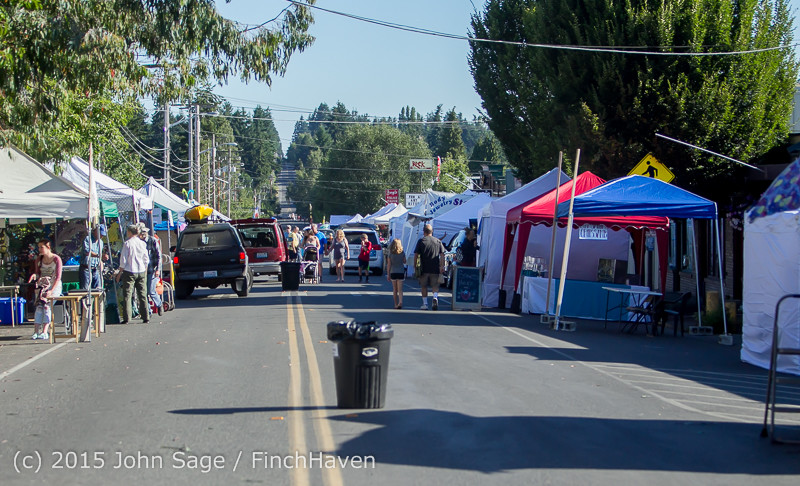 19533 Strawberry Festival Saturday Walkabout 2015 071815