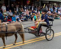 6567 Vashon Strawberry Festival Grand Parade 2013 072013