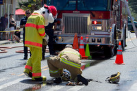 7065 VIFR Firefighter Challenge 2013 072013