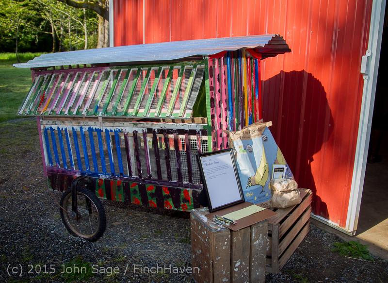 2697_Vashon-Maury_Co-op_Preschool_Auction_2015_042515