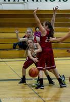 2649 Girls JV Basketball v Mountlake-Terrace 120215