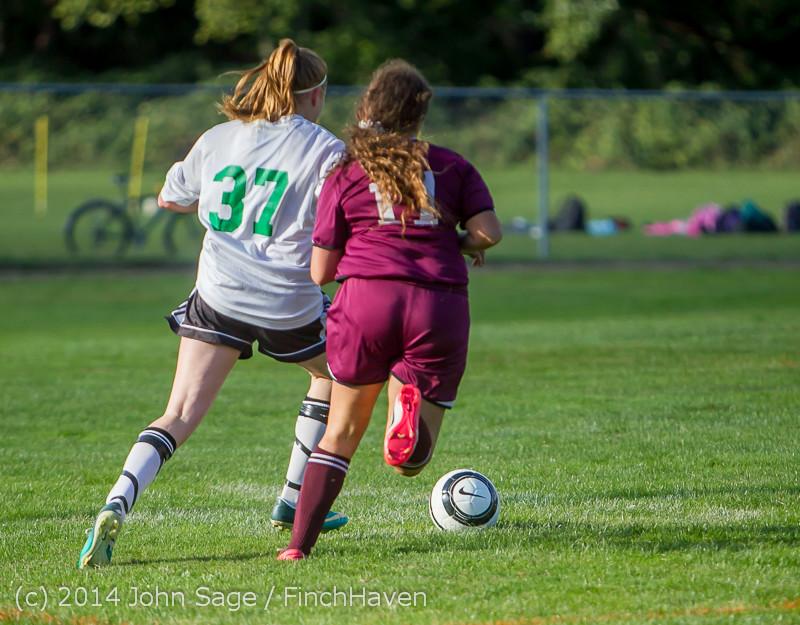 4920 Girls JV Soccer v NW-School 100814