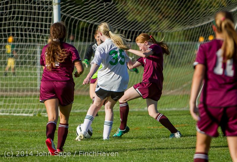 5321 Girls JV Soccer v NW-School 100814