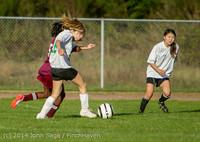 6452 Girls JV Soccer v NW-School 100814