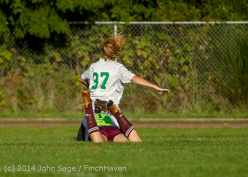 6690 Girls JV Soccer v NW-School 100814