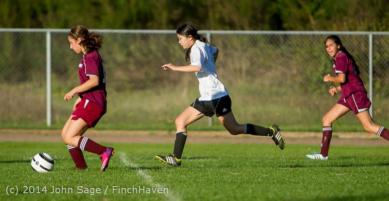 6967 Girls JV Soccer v NW-School 100814