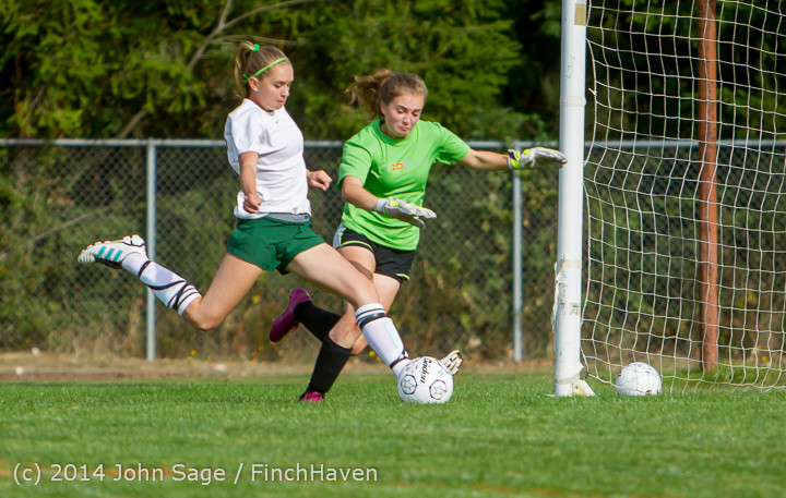 1282_Girls_Varsity_Soccer_v_Chief-Sealth_092214