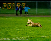 22266 JV Football v Casc-Chr 102615