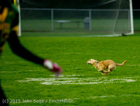 22279 JV Football v Casc-Chr 102615