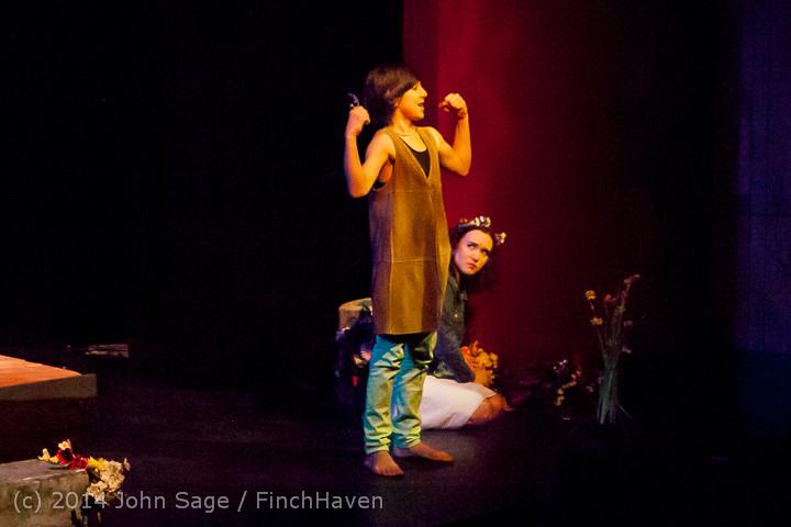 3481_Metamorphoses_VHS_Theater_Arts_02092014