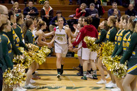 20608 VHS Girls Basketball Seniors Night 2014 021114
