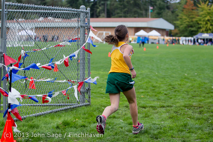 2015 VHS-McM Cross Country All-Leagues 100113