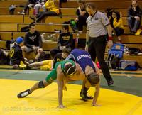 13 5043 Wrestling Sub-Regionals 020616