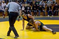 19 6501 Wrestling Sub-Regionals 020616