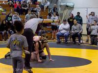 19 6550 Wrestling Sub-Regionals 020616