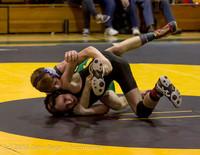 23 6868 Wrestling Sub-Regionals 020616