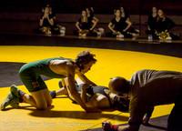 2684 Wrestling v Belle-Chr 011515