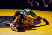 3768 Wrestling v Belle-Chr 011515
