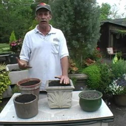 Potting soil recipe for annuals finegardening for Topsoil vs potting soil