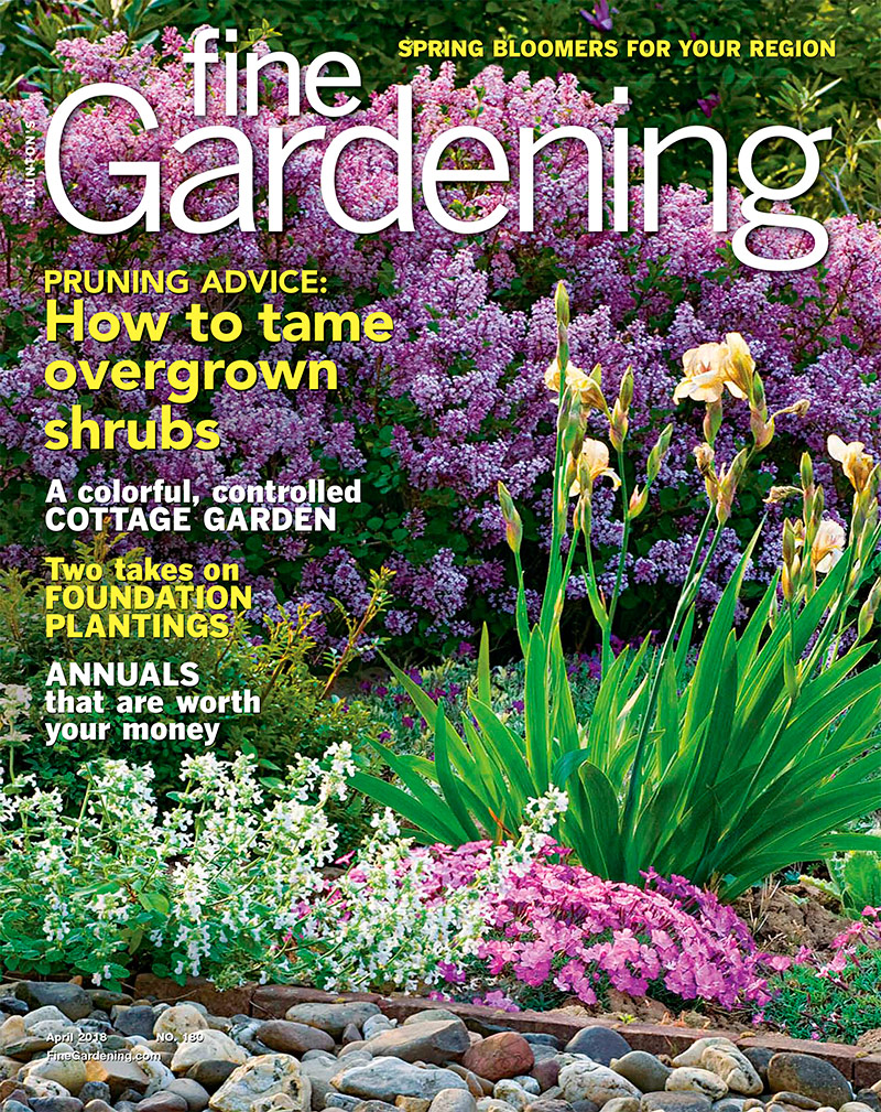 fine gardening. Gardening Tip: Use A Reference Photo To ID Seedlings Fine N